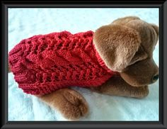 (6) Name: 'Knitting : Celtic Doggie Cable and Lace dog sweater