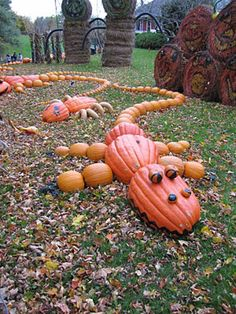 Who wouldn't want a yard full of Pumpkin Gators?