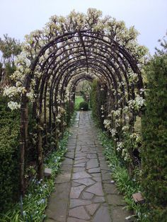 Spectacular front walkway landscaping ideas - kindly visit our piece for a lot more concepts!