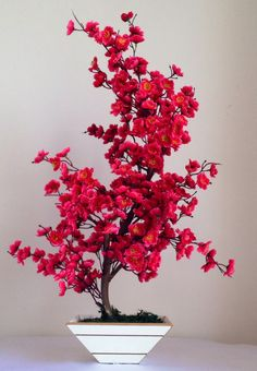 Bonsai Cerejeira Pink – My Home Decoration Bonsai Tree Types, Indoor Bonsai Tree, Bonsai Art, Bonsai Garden, Bonsai Trees, Plantas Bonsai, Best Greenhouse, Greenhouse Gardening, Unique Trees