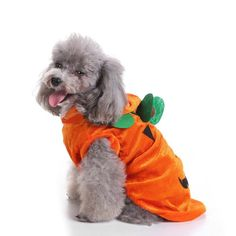 If you are looking for a funny, cute or scary costume you've come to the right place Pick from 7 different options available Pumpkin, Tortoise, Hotdog, Wizard, Rocket, Spider and Unicorn We have many other pet costumes in our collection. There is something for every taste. Perfect for #cats 🐱or #dogs 🐶, for #halloween 🎃 or just for fun. These are easy to put on and comfortable for your pet to wear which means you will be able to get better photos. #dogcostume #catcostume #petstore Pet Halloween Costumes, Scary Costumes, Pet Costumes, Just For Fun, Pet Store, A Funny, Tortoise, Hot Dogs, Your Pet