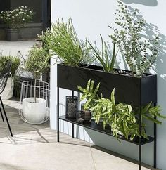 Jardiniere Design, Diy Planter Box, Gardening, Love Home, Backyard, Inspiration, Roof Gardens, Blog Deco, Gardens