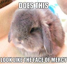 Face of mercy - www.meme-lol.com
