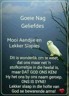 Evening Quotes, Evening Greetings, Afrikaanse Quotes, Goeie Nag, Angel Prayers, Morning Inspirational Quotes, Special Quotes, Sleep Tight, Good Night