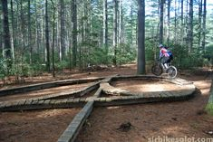 Dupont State Forest Skill Park