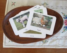 Farm- Montessori Toddler Language Cards- Set of Farm: Mother and Baby Pictures