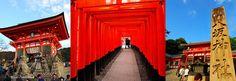 只要500日圓!超划算的京都巴士一日券,輕鬆玩遍京都!
