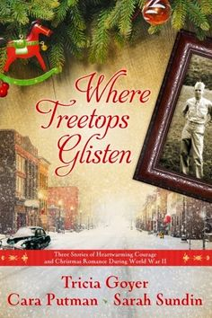 With family emphasis, spiritual insights, World War II theme, romance, and beloved Christmas carols that debuted during the era, this collection stands out among other Christmas stories & is the perfect Christmas read! Reviewed at The Power of Words.