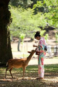 Have you heard of this incredible deer town? Nara is the awesome city in Japan where Sika deer are regarded as national tr. Nara, Japanese Culture, Japanese Art, Japanese Things, Japanese Landscape, Japanese Kimono, Japanese Style, Photo Japon, Japan Photo