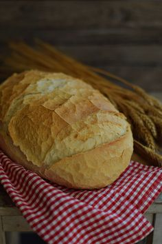 Ciabatta, Bakery, Food And Drink, Favorite Recipes, Breads, Brot, Bread Rolls, Bread, Braided Pigtails