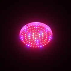 Special Offers - LEDwholesalers 2506RBOW Blue/Red/Orange/White 90 x 1 Watt LED High Power Round Grow Light - In stock & Free Shipping. You can save more money! Check It (November 20 2016 at 08:55AM) >> http://growlightusa.net/ledwholesalers-2506rbow-blueredorangewhite-90-x-1-watt-led-high-power-round-grow-light/