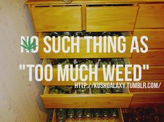 Whoever said too much of a good thing is bad for you never had too much herb