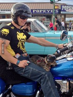Just a man and his cat out for a ride. Safety first.
