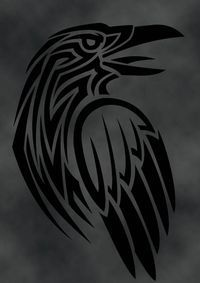 Raven by verreaux.deviantart.com on @deviantART