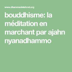 bouddhisme: la méditation en marchant par ajahn nyanadhammo