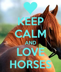 KEEP CALM AND LOVE HORSES. Another original poster design created with the Keep Calm-o-matic. Buy this design or create your own original Keep Calm design now. My Horse, Horse Love, Horse Riding, Polo Horse, All The Pretty Horses, Beautiful Horses, Animals Beautiful, Funny Horses, Cute Horses