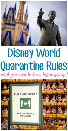 Everything you need to know about Disney quarantine rules before you go! #DisneyParks #DisneyWorld #DisneyCreators #DisneyTips #DVCMember #DisneyFamily Disney Vacation Club, Walt Disney World Vacations, Disney Cruise Line, Disney World Resorts, Disney Travel, Disney World Tips And Tricks, Disney Tips, Disney Magic, Florida Tourist Attractions
