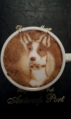 Little dog in my cup