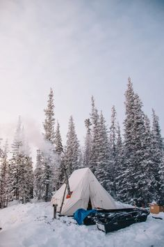 three Tremendous A laugh Tenting Video games For All Ages - Camping Photography Tree Camping, Winter Camping, Camping And Hiking, Family Camping, Camping Hacks, Outdoor Camping, Outdoor Gear, Camping Ideas, Backpacking