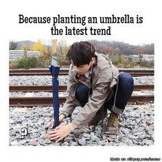 Let's plant some umbrellas | Meme Center | allkpop