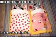Cute camping stuff