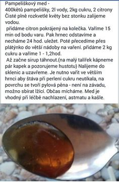 Púpavový med Korn, Canning, Personalized Items, Home Remedies, Recipes, Home Canning, Conservation