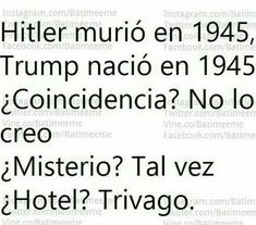 Hitler died in Trump was born in Coincidence? I think not. Wtf Funny, Hilarious, Funny Images, Funny Pictures, Hotel Trivago, Chesire Cat, Best Memes, Laugh Out Loud, Haha
