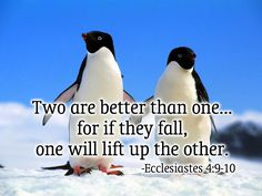 New quotes love friendship bible verses Ideas Bible Verses About Friendship, Friendship Quotes, Love Life Quotes, New Quotes, Hindi Quotes, Funny Quotes, Quotes Images, Quotations, Inspirational Quotes