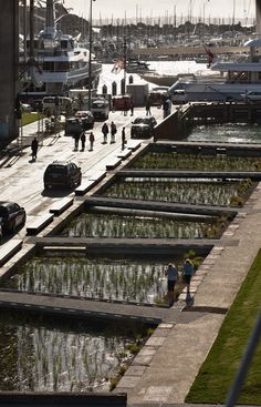 #landarch #urbandesign Taylor-Cullity-Lethlean_AucklandWaterfront_19    Adjacent to Silo Park is a large bio-retention wetland that collects stormwater from the wider site.