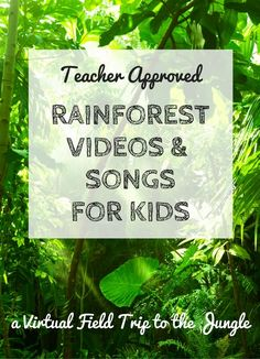 Explore on a virtual field trip to the rainforest as we discover jungle animals and plants with rainforest videos and rainforest songs for kids. Rainforest Facts For Kids, Rainforest Song, Rainforest Preschool, Rainforest Classroom, Rainforest Project, Preschool Jungle, Preschool Themes, Amazon Rainforest, What Is A Rainforest