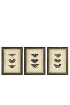 Butterfly Wall Art. I Love Butterflies:)