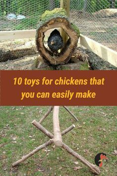 Want to know how to make happy chickens? Make this esy DIY Toys for chickens and you will see the results If you are raising backyard chickens, it's important to always make sure your pets have something they can 'play' with. Chicken Garden, Chicken Life, Backyard Chicken Coops, Chicken Runs, Raising Backyard Chickens, Keeping Chickens, Pet Chickens, Backyard Farming, Diy Toys For Chickens