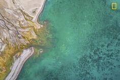 """""""Cada verano, miles de belugas regresan a las aguas poco profundas de Nunavut. La foto fue tomada durante un reportaje sobre la vida salvaje realizado en Nunavut y Groenlandia durante el verano de 2017"""". (Florian Ledoux/Concurso Fotógrafo de Naturaleza del Año de National Geographic)"""