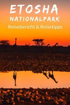 The Ultimate Guide to Packing Light for Namibia World Clipart, African Holidays, Safari, Reisen In Europa, Packing Light, Road Trippin, Africa Travel, Summer Travel, Plan Your Trip