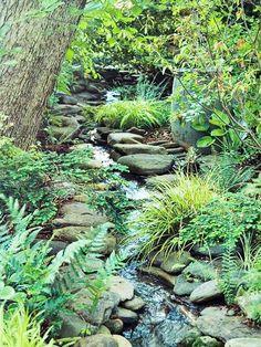 Stream bed in a shady garden
