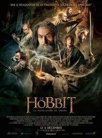 LE HOBBIT : LA DÉSOLATION DE SMAUG raconte la suite des aventures de Bilbon Sacquet, parti reconquérir le Mont Solitaire et le Royaume perdu des Nains d'Erebor, en compagnie du magicien Gandalf le Gris et des 13 nains, dont le chef n'est autre que Thorin Écu-de-Chêne. Après avoir survécu à un périple inattendu, la petite bande s'enfonce vers l'Est, où elle croise Beorn, le Changeur de Peau, et une nuée d'araignées géantes au cœur de la Forêt Noire qui réserve bien des dangers.