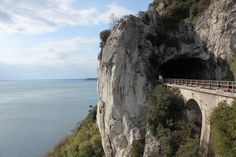 Golfo di Trieste (Italy): Top Tips Before You Go - TripAdvisor