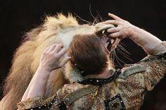 Vea lo que se atrevió a hacer un domador de leones  Oleksy Pinko, del Circo de Ucrania, metió su cabeza dentro de la boca del animal. También le dio varios abrazos. Vea las imágenes aquí:  http://www.noticiascaracol.com/mundo/galeria-295202-vea-a-se-atrevio-a-hacer-un-domador-de-leones#ad-image-1