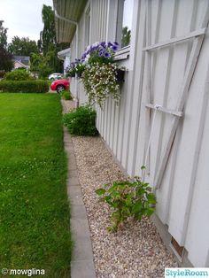 Kantsten runt huset. Radiant Heaters, Rock Style Men, Baby Bumper, Photography Tips For Beginners, Backyard Landscaping, Landscaping Ideas, Gardening Tips, Wild Flowers, Sidewalk