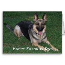 Shop German Shepherd: Fathers Day Card created by HolidayFun. Personalize it with photos & text or purchase as is! Cute Puppies, Dogs And Puppies, Canvas Picture Frames, German Shepherd Dogs, German Shepherds, Nature Posters, Beautiful Dogs, Fathers Day Gifts, Best Dogs