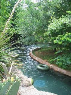 natural backyard pools with lazy river - Google Search