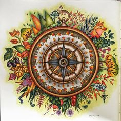 Start my journey with a compass #johannabasford #enchantedforest #coloringbook