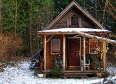 .cabin in the woods