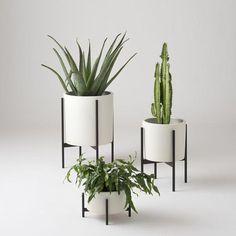 Case Study Planter - White
