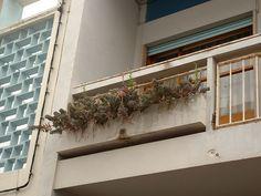Gomes da Costa, architect Algarve, Portuguese, Modern Architecture, Costa, Modernism, Architects
