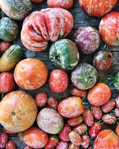 A beautiful muddy mess! A few of our homegrown heirloom tomatoes picked just after a long overdue summer shower!!