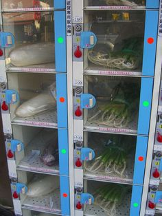 Japan – The Land of Vending Machines ~ Kuriositas