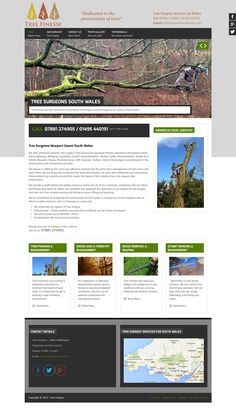 Website for tree surgeon in Torfaen South Wales