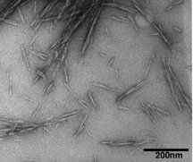 Natural nanocrystals shown to strengthen concrete - http://scienceblog.com/77592/natural-nanocrystals-shown-to-strengthen-concrete/