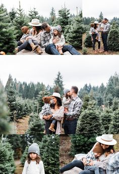 This year, Elizabeth Hite Photography hosted 2 days of Christmas Tree farm mini sessions at Lee Farms in Tualatin, Oregon. Christmas Pictures Outfits, Family Christmas Pictures, Xmas Family Photo Ideas, Family Holiday, Christmas Photo Shoot, Christmas Photoshoot Ideas, Family Christmas Outfits, Christmas Mini Sessions, Christmas Clothing